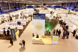 World Olive Oil Exhibition (WOOE), el Encuentro Internacional del Aceite de Oliva. (photo: )