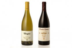 Muga Blanco 2013 y Prado Enea Gran Reserva 2005. (photo: )